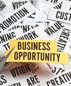 Business Opportunity seekers